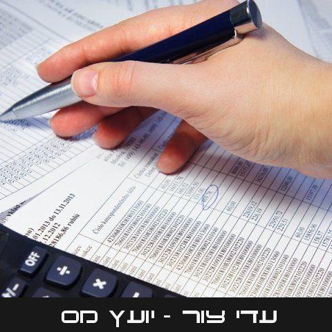 עדי צור | יועץ מס